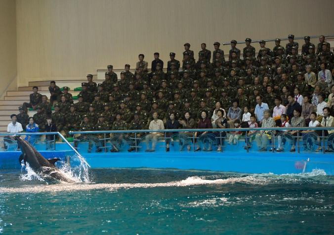 Rungna Dolphinarium, Pyongyang, North Korea