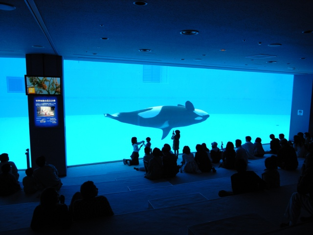 Port_of_Nagoya_Public_Aquarium