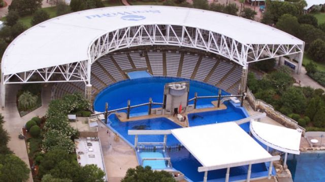SeaWorld Orlando's first Shamu Stadium.  Construction completed 1984, fully operational 1985.