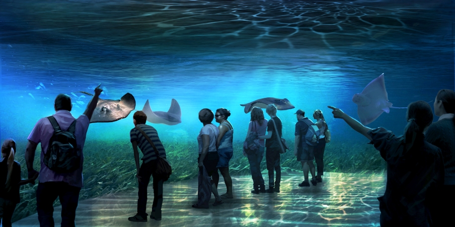 4_National_Geographic_Encounter_Shallows_A