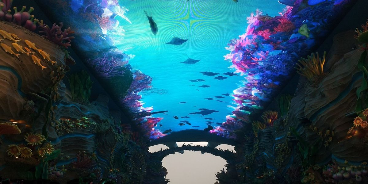 chimelong10-5435f1db & Chimelong Ocean Kingdom | ThemedReality