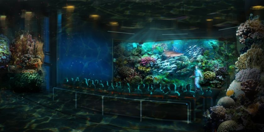 florida-aquarium-coral-tank-601f1f15