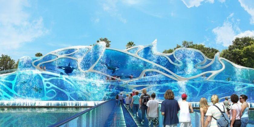 orca-aquarium-f524924e