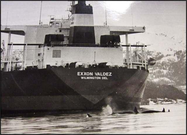 f1_kwstanker-1024x743